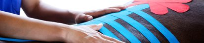 veterinary-kinesiology-taping-413x88